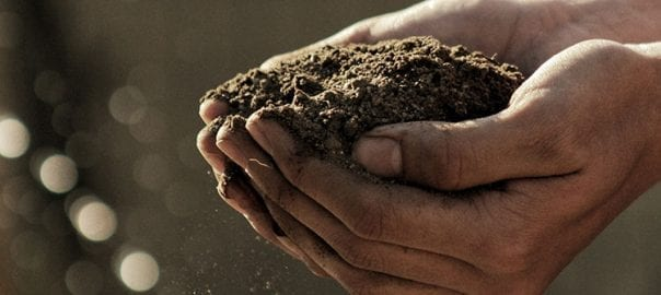 Proyectos Agrícolas y el Crowdfunding
